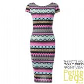 Molly Metallic Aztec Bodycon Petite Height Midi Dress